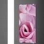 Радиатор электрический NOVELLINI Sole  500*1000 Print SOLT5010-N0021 купить