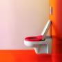 Крышка-сиденье для унитаза LAUFEN Florakids SoftClose 8.9103.1.062.000.1 купить