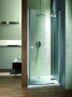 Дверь душевая в нишу RADAWAY Almatea DWJ 1100*1950 31212-01-01N купить