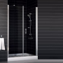 Дверь душевая в нишу VEGAS-GLASS 111,5-116,5 см EP-F-2 0115 08 01 купить