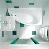 Ванна акриловая RAVAK Avocado 160*75 P CH01000000 купить