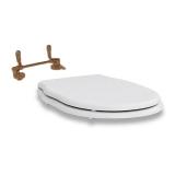 Крышка-сиденье ARTCERAM Hermitage SoftClose HEA005 01:72 купить